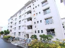 南東向きの日当たりの良いお部屋です。大阪府堺市南区桃山台1丁